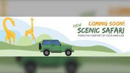 Toronto Zoo developing drive-thru experience 3
