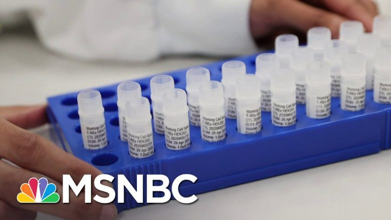 Fmr. FDA Commissioner: Making & Distributing The COVID-19 Vaccine Not 'An Easy Undertaking' | MSNBC 1