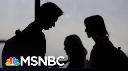 Jill Biden: 'We Need Help With Mental Health In Our Schools' | MSNBC 8