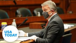 Dr. Rick Bright appears before the House Energy and Commerce Committee | USA TODAY 9