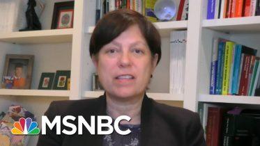 WH Adviser Blames CDC For Testing Problems | Stephanie Ruhle | MSNBC 6