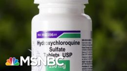 Dr. William Schaffner: 'No Evidence' Hydroxychloroquine Prevents COVID-19   MTP Daily   MSNBC 5