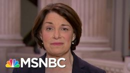 Sen. Amy Klobuchar: 'We Can't Let Everyone In The Country Go Bankrupt' | The Last Word | MSNBC 8