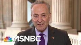 Sen. Chuck Schumer: New York City Will Overcome This | Morning Joe | MSNBC 3