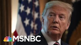 Hayes On Use Of Unproven COVID-19 Drug | All In | MSNBC 4
