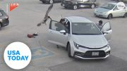 Protective goose attacks woman walking into work | USA TODAY 3