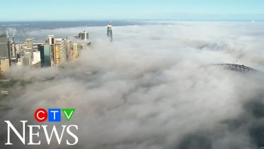Spectacular video shows fog shrouding the entire city of Sydney, Australia 6