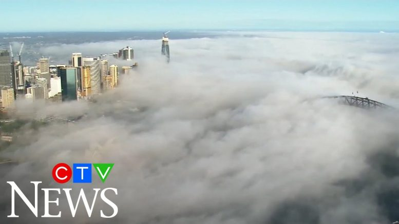 Spectacular video shows fog shrouding the entire city of Sydney, Australia 1