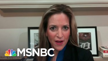 MI's Sec. Of State Addresses Pres. Trump's Tweets Attacking Her | MSNBC 6