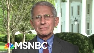 Fauci: Reopening U.S. Could Be Dependent On Mass Antibody Testing   Deadline   MSNBC 6
