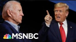 New Poll Puts Biden 11 Points Ahead Of Trump Nationally | The 11th Hour | MSNBC 7