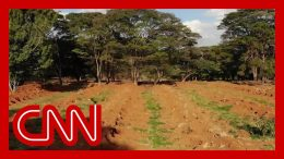 Drone footage captures mass graves dug in Brazil 9