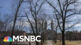 Pandemic Dramatically Changing The Way Americans Live And Work | Stephanie Ruhle | MSNBC 4