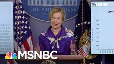 Dr. Birx: There Is Still 'Significant Virus Circulating' In D.C. And Other Metro Areas | MSNBC 6