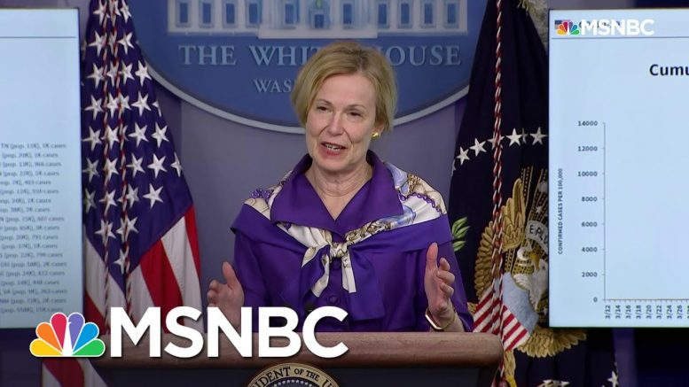 Dr. Birx: There Is Still 'Significant Virus Circulating' In D.C. And Other Metro Areas | MSNBC 1