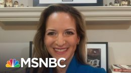 Michigan Sec. Of State: Trump's Tweets Were Attempt To Cause Doubt In Election Process | MSNBC 2