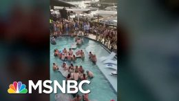 Why Social Distancing Remains Important While States Reopen | Andrea Mitchell | MSNBC 2