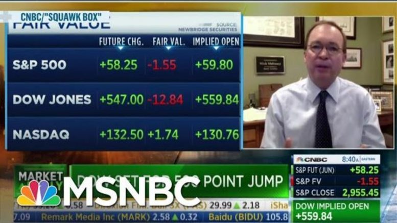 Doctor Fact Checks Mick Mulvaney's Comparison Between COVID-19 And Flu Mortalities | MSNBC 1