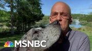 Deadline: White House Gets A Special Canine Guest | Deadline | MSNBC 3