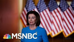 Pelosi: Americans Shouldn't Have To Choose Between Their Health And Their Vote | All In | MSNBC 4