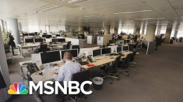 Public Health Expert On 4 Things We Need To Reenter The Office | All In | MSNBC 3