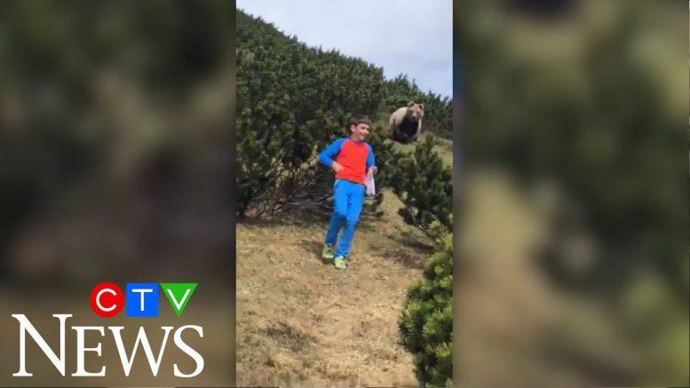 12-year-old boy keeps calm during bear encounter 1