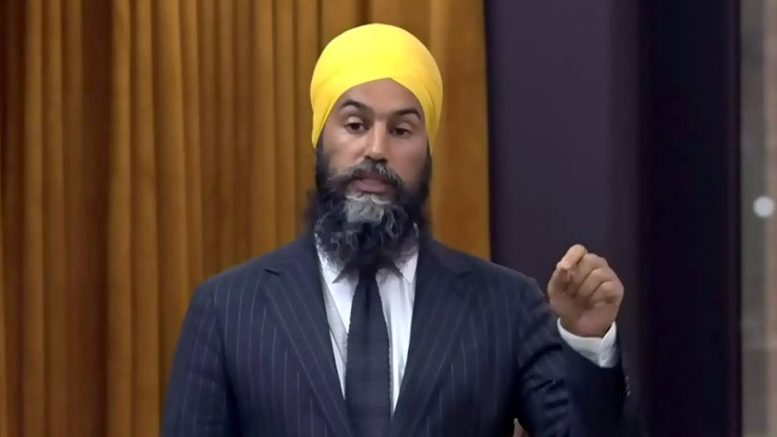 NDP Leader Singh questions PM on long-term care homes 1