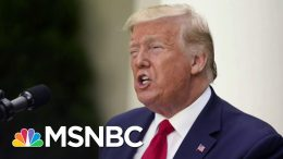 Trump Rages At Twitter After Fact-Check Of His False Mail Ballots Tweet | The 11th Hour | MSNBC 9