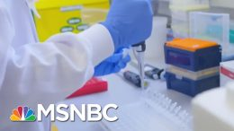 Blood Markers Discovered For COVID-Linked Syndrome In Children | MSNBC 6