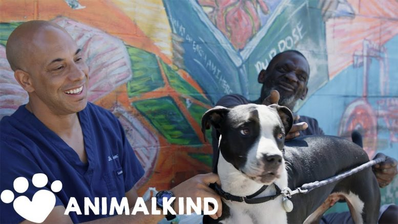 Veterinarian helps homeless pet owners for free | Animalkind 1