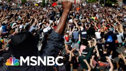 Nikole Hannah-Jones: Black Americans Are 'Demanding Their Full Citizenship' | MSNBC 1