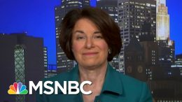 Klobuchar: Trump Went From 'I Alone Can Fix This' To 'I Am Backup' | All In | MSNBC 4