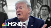 Brinkley: Nothing Else Like Trump's 'Cavernous Stupidity' In U.S. History | The 11th Hour | MSNBC 4
