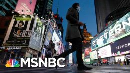 Is New York Approaching A Coronavirus Peak, Or A Plateau? | The Day That Was | MSNBC 6