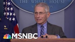 Dr. Fauci Addresses Question Of 'When' We'll Return To Normal | Morning Joe | MSNBC 2