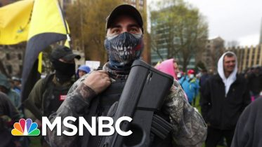 Frontline Doctor In Michigan Responds To Armed Protesters At State Capitol | The Last Word | MSNBC 6