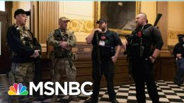 Armed Protestors Try To Storm Michigan Capitol Over Virus Restrictions   MSNBC 9