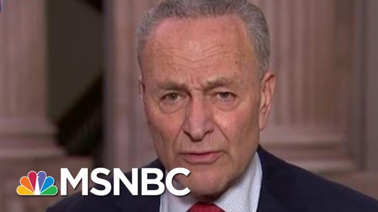 Schumer: Trump Admin Prolonging Nation's Agony, Avoiding Science | Rachel Maddow | MSNBC 1