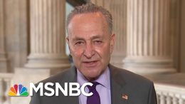 Senate Dems Call For Greater Action On Testing | Morning Joe | MSNBC 6