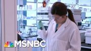 U.S., U.K. Officials Warn Of Cyberattacks On Hospitals | Morning Joe | MSNBC 3
