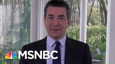 Dr. Scott Gottlieb: Highly Likely Virus Will Return In The Fall | Morning Joe | MSNBC 6