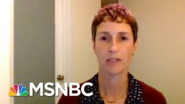 'Risk Isn't Binary': Harvard Professor On How To Safely Avoid Quarantine Fatigue | All In | MSNBC 4
