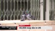 UNITED KINGDOM COVID DEATHS COULD REACH 40,000 2