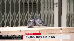 UNITED KINGDOM COVID DEATHS COULD REACH 40,000 6