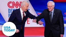 Joe Biden and Bernie Sanders face off in one-on-one Democratic primary debate | USA TODAY 5