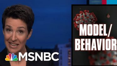 Failed US Federal Response To COVID-19 Manifests As International Disaster | Rachel Maddow | MSNBC 5