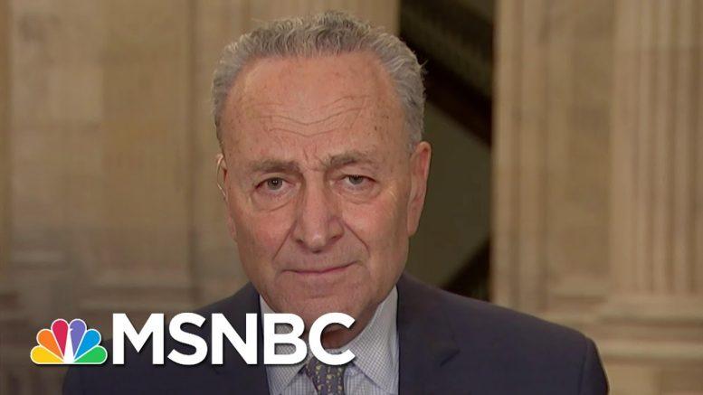Chuck Schumer: 'Greatest Failure' Of The Trump Admin. Is Coronavirus Testing | The Last Word | MSNBC 1