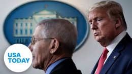 President Trump and Coronavirus Task Force give updates on coronavirus pandemic | USA TODAY 6