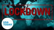 Coronavirus: 4 post-pandemic scenarios | USA TODAY 3