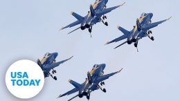U.S. Navy Blue Angels and Air Force Thunderbirds fly over New York City | USA TODAY 8